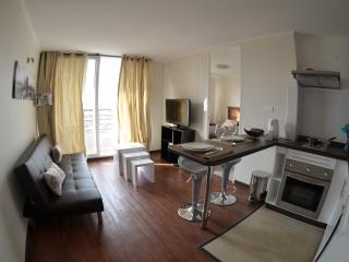 Furnished 2.Departamento Paz, near La Moneda !!, Santiago
