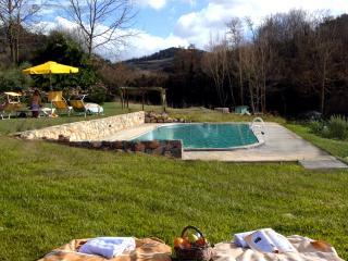 Molino di Amarrante in Chianti - piscina privata, Montaione