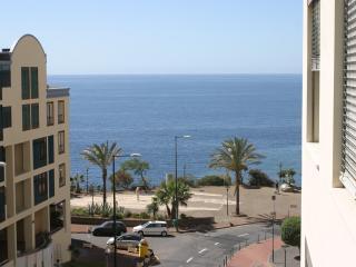 Elena's Apartment - Wonderfull Views of the Ocean, Sao Martinho