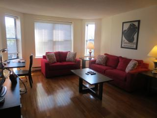 GSA LUXURY 2BR/2BA APT IN POST-WAR BUILDING + WIFI, Boston