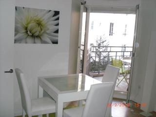 Spacious flat in Levallois