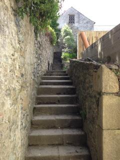 Steps up to the garden