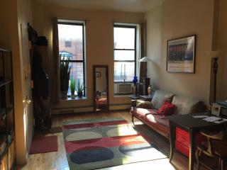 Beautiful Full Sunny Apartment in Harlem New York