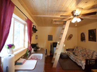 Alaska Wildlife Cabins and Hostel - Get the true feeling of Alaska - Enjoy Wildlife and the gorgeous Northern Lights, Fairbanks