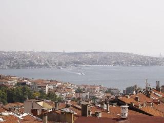 Sea view apartment in Besiktas, Istambul