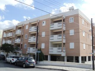 Spacious 1-bedr apartment in Lykavitos