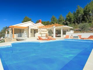 ***secluded villa with pool***, Vela Luka