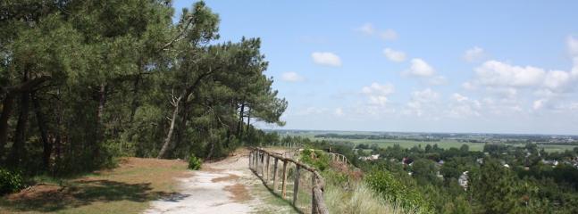 forest/dunes/polder