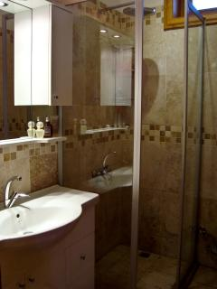 The guest bathroom, including large rain shower.