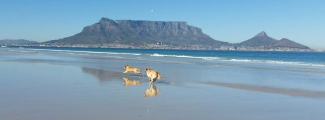Table Mountain from Milnerton beach 15 minutes from the apartment