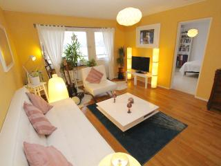 Lovely living room near Arlanda Airport, Stockholm