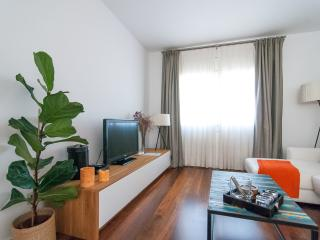 Luxury apartment in city center, Barcelona