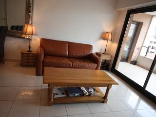 Spacious and cozy apartment, with swimming pool!, Cannes