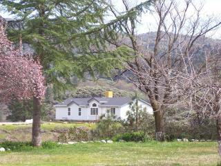 DOGWOOD, 8pp, next to Sac River & Shasta lake, game room, pool, mtn bikes & more