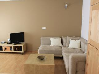One bedroom apartment in city centre, easy parking, Liubliana