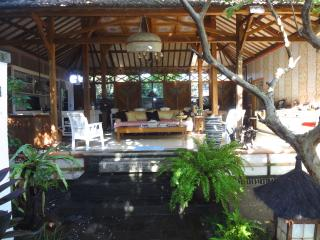 Tranquil Artist's Retreat in Sanur