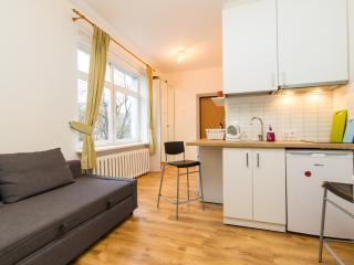 Vilnius center apartment, Junior studio apartment