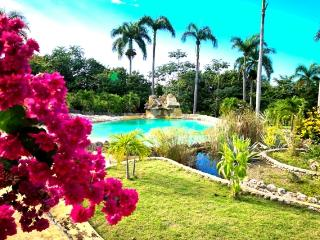 Charming Countryside Chalet - Apartment 3, Puerto Plata