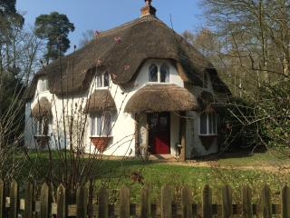 Live the Dream in a Chocolate Box Cottage, Dorset, Ringwood