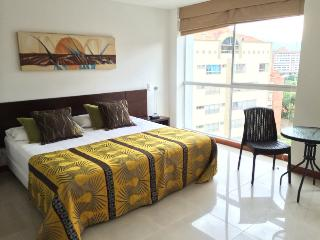 Poblado Studio Available Daily or Monthly 0065, Medellin