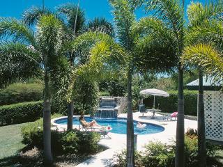 Villa Verandah  Pool  15 x 30 ft long with a waterfall.