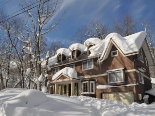 Hakuba Echo Villa - Self Contained Chalet, Hakuba-mura