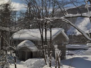 Cat's Villa Hakuba - Self Contained Ski Chalet