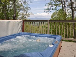 Mountain River Retreat - Log Cabin with Screened Porch, Hot Tub, and Wi-Fi, Bryson City