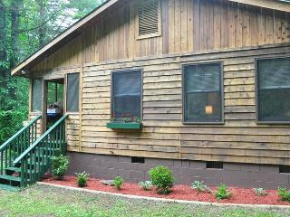 Dragonfly Cabin - Enjoy the Waterfall Off the Deck and Hike on 23 Private Acres, Bryson City