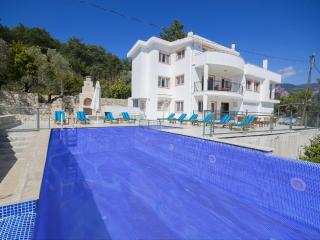 Holiday villa in islamlar / kalkan, sleeps 10: 149