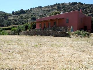 Orange Grove Ferienhaus in Tinos, Exomvourgo