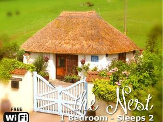 Luxury thatched seaside Devon cottage - The Nest, Shaldon
