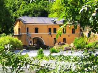 LE MOULIN DE CHERRE   ANCIENNE PAPETERIE, Aubigne-Racan