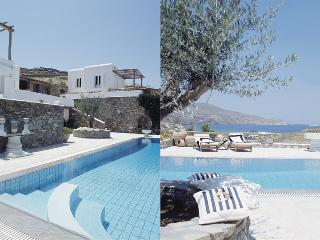Villa Galaxy with private pool, Ftelia