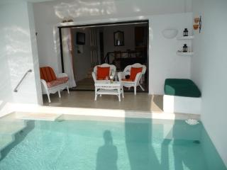 Our 14 by 14 foot plunge pool