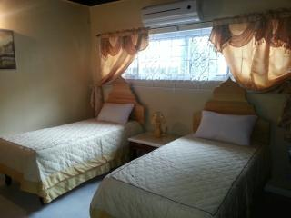 Twin Room in Luxury Villa (2 of 2)