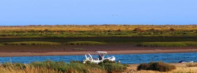 Boat transport to Ria Formosa is included