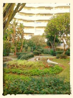 15.000 metros cuadrados de jardines tropicales en el interior del complejo