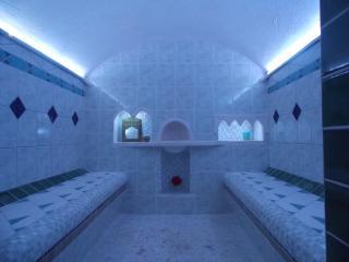Chambre d'hotes Eco-responsable : Zen Au Marais / Hammam Traditionnel