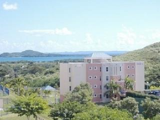 Pet friendly Garden Apt w/Ocean View front Marina, Ceiba