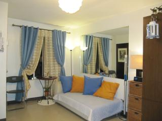 Fully Furnished Big Studio Condo, Cebu City