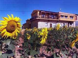 Casa rural la antigua vaqueria, Cuenca