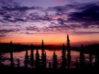 The Retreat in the Woods 150 feet from lake, Soldotna