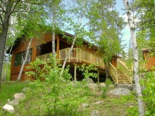 Serenity: Beautiful Island Getaway Cabin on Bear Island Lake
