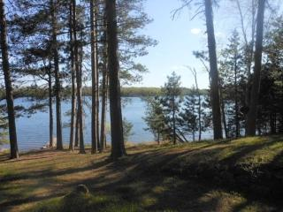Oakwind North: Towering Pines with a Relaxing Setting at this Eagles Nest Lake #2 cabin!, Ely