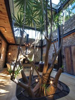 Madam Yucca Tree grows indoors between the livingroom area and dining/kitchen areass
