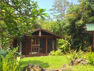 Island Getaway -pavilion-style with pool & hot tub