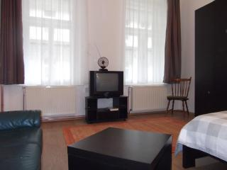 Confortable apartment in the heart of Budapest