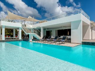 GRAND PALMS...Irma Survivor! Fabulous modern 3BR villa just steps from Plum Baie