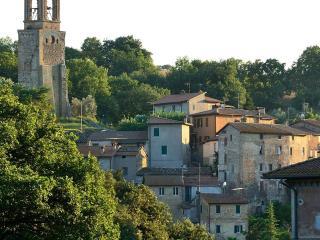 Ortensie Viola - Panorama  ad Est - Center Italy Perugia -